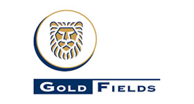 cliente_gold_fields